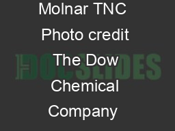 Annual Progress Report THE NA URE CO SERVA NC Y  DOW Photo credit Jen Molnar TNC  Photo credit The Dow Chemical Company  Working Together to Value Nature Three years ago our two organizations came t
