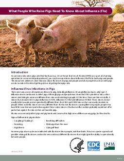 CS January  What People Who Raise Pigs Need To Know About Inuenza Flu Introduction As someone who raises pigs whether for show e PowerPoint PPT Presentation