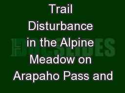 Trail Disturbance in the Alpine Meadow on Arapaho Pass and