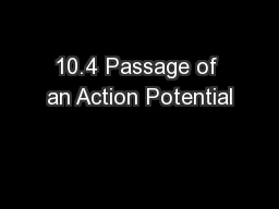 10.4 Passage of an Action Potential