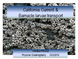 California Current & PowerPoint PPT Presentation