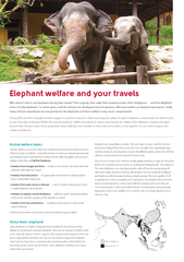 Elephant welfare and your travels              Animal welfare basics A PowerPoint PPT Presentation