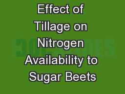Effect of Tillage on Nitrogen Availability to Sugar Beets