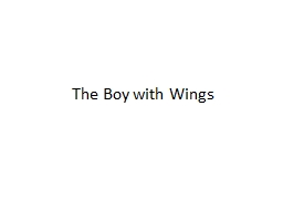 The Boy with Wings PowerPoint PPT Presentation