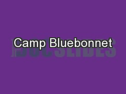 Camp Bluebonnet