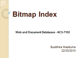Bitmap Index