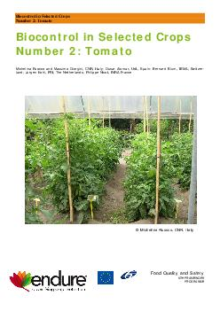 Biocontrol in Selected Crops Number  Tomato Biocontrol in Selected Crops Number  Tomato Michelina Ruocco and Massimo Giorgini CNR Italy Oscar Alomar UdL Spain Bernard Blum IBMA Switzer land Jurgen Ko PDF document - DocSlides