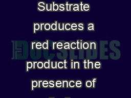 Vector Red Substrate Vector Red Substrate produces a red reaction product in the presence of alkaline phosphatase AP enzyme PDF document - DocSlides