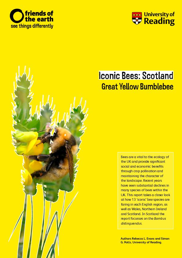 Iconic Bees: Scotland