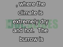 , where the climate is extremely dry and hot.  The burrow is