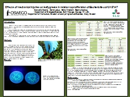Effects of mechanical injuries on leafy greens in relation PowerPoint PPT Presentation