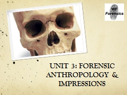 UNIT 3: FORENSIC ANTHROPOLOGY & IMPRESSIONS