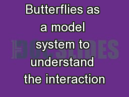 Butterflies as a model system to understand the interaction