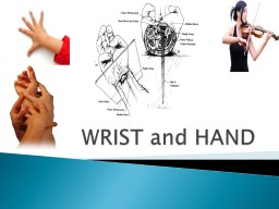 WRIST and HAND PowerPoint PPT Presentation