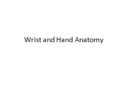 Wrist and Hand Anatomy