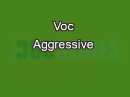 Voc Aggressive & Casual