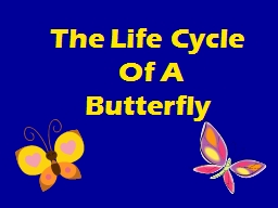 The Life Cycle PowerPoint PPT Presentation