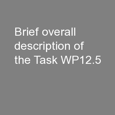 Brief overall description of the Task WP12.5 PowerPoint PPT Presentation