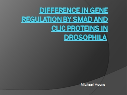 Difference in Gene Regulation by Smad and CLIC proteins in