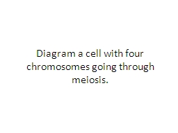 Diagram a cell with four chromosomes going through meiosis.
