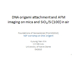 DNA origami attachment and AFM imaging on mica and SiO PowerPoint Presentation, PPT - DocSlides