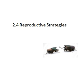 2.4 Reproductive Strategies PowerPoint PPT Presentation