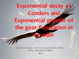 Exponential decay of Condors and Exponential growth of  the