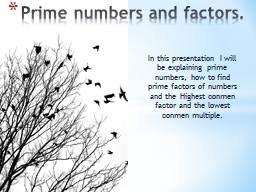 In this presentation I will be explaining prime numbers, ho