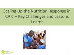 1 Scaling Up the Nutrition Response in CAR  – Key Challen