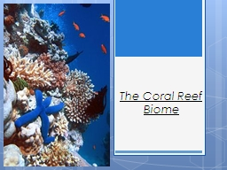 The Coral Reef Biome PowerPoint PPT Presentation