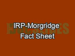 IRP-Morgridge Fact Sheet #4: Young Dads and Disadvantage SourcesBerger