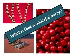 What is that wonderful berry? PowerPoint PPT Presentation