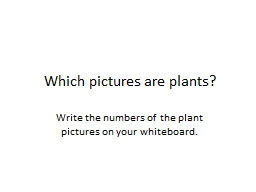 Which pictures are plants?