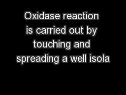 Oxidase reaction is carried out by touching and spreading a well isola PowerPoint PPT Presentation