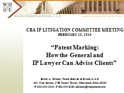 CBA IP LITIGATION COMMITTEE MEETING