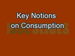Key Notions on Consumption