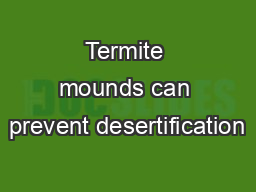 Termite mounds can prevent desertification