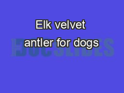 Elk velvet antler for dogs