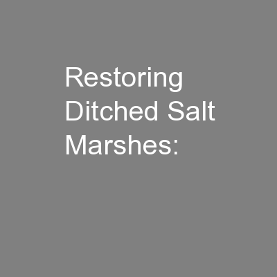Restoring Ditched Salt Marshes: