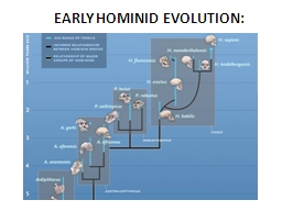 EARLY HOMINID EVOLUTION: