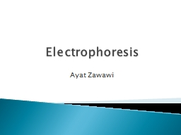 Electrophoresis PowerPoint PPT Presentation