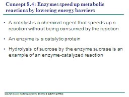 Concept 8.4: Enzymes speed up metabolic reactions by loweri