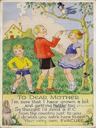 What does this postcard say about life in the country for