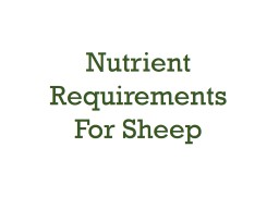 Annual Ewe Management Program PowerPoint PPT Presentation