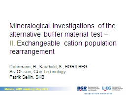 Mineralogical investigations of the alternative buffer mate