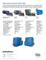 Large Induction Motors  through  HP SB   through  HP LARGE INDUCTION MOTORS LARGE ROBUST MOTORS FOR HEAVY DUTY AND EXTREME APPLICATIONS A HISTORY OF RELIABILITY Since  the name Marathon Electric has