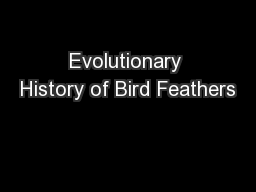 Evolutionary History of Bird Feathers