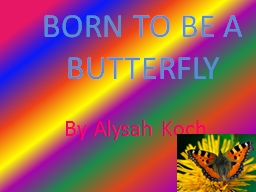 BORN TO BE A BUTTERFLY PowerPoint PPT Presentation