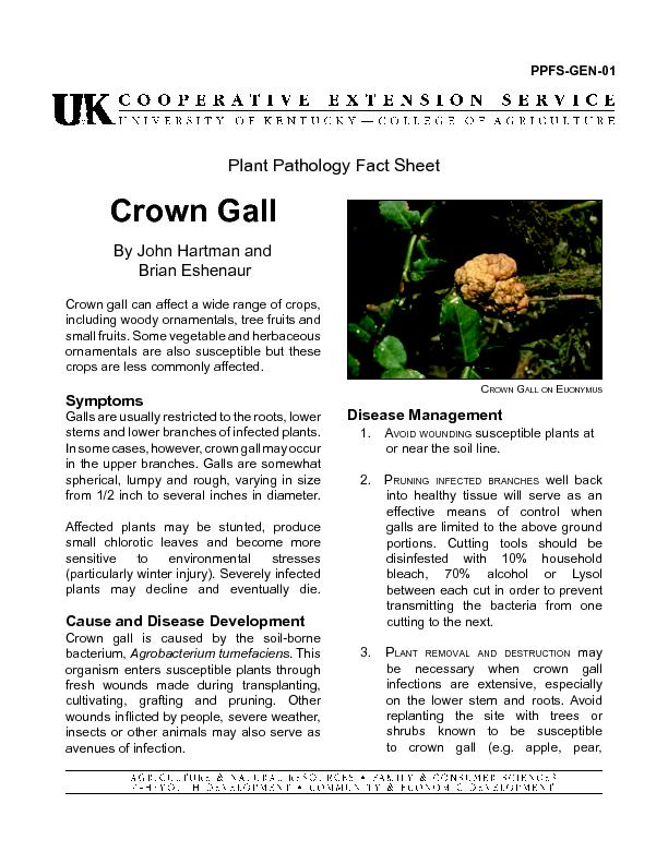 Crown gall can affect a wide range of crops,
