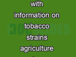 Inside Cuban Cigars Tabakmann An insider s guide to Cuban cigars with information on tobacco strains agriculture cigar production and the business of Cuban cigars PowerPoint PPT Presentation